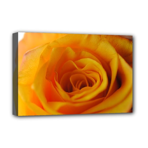 Yellow Rose Close Up Deluxe Canvas 18  x 12  (Framed)