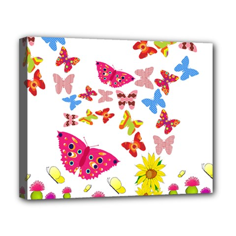 Butterfly Beauty Deluxe Canvas 20  x 16  (Framed)