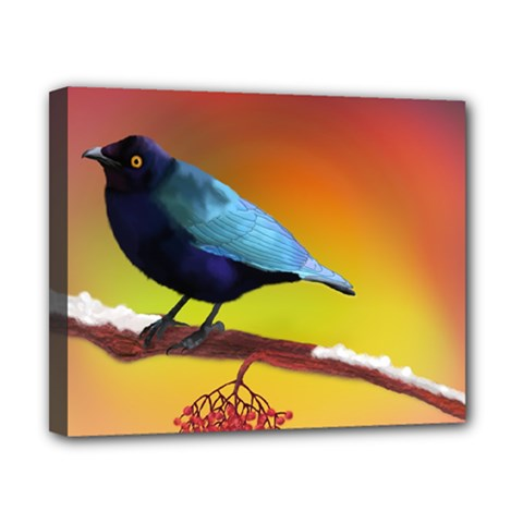 The Blue Bird Canvas 10  X 8  (stretched)