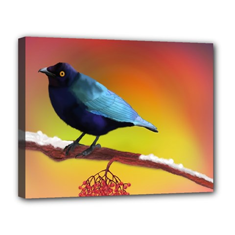 The Blue Bird Canvas 14  x 11  (Stretched)