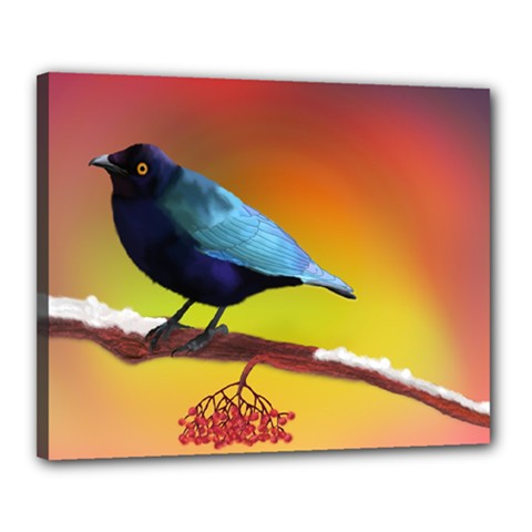 The Blue Bird Canvas 20  x 16  (Stretched)