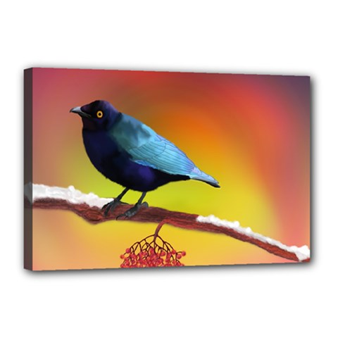 The Blue Bird Canvas 18  X 12  (stretched)