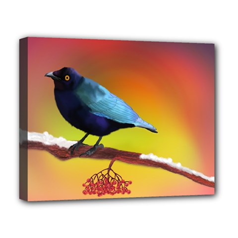 The Blue Bird Deluxe Canvas 20  x 16  (Stretched)