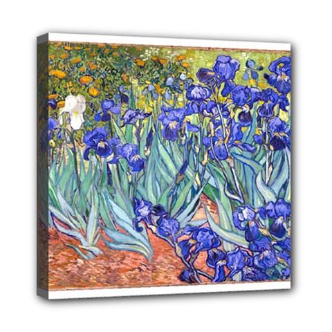 Vincent Van Gogh Irises Mini Canvas 8  x 8  (Framed)
