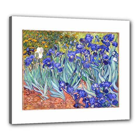 Vincent Van Gogh Irises Canvas 24  x 20  (Framed)