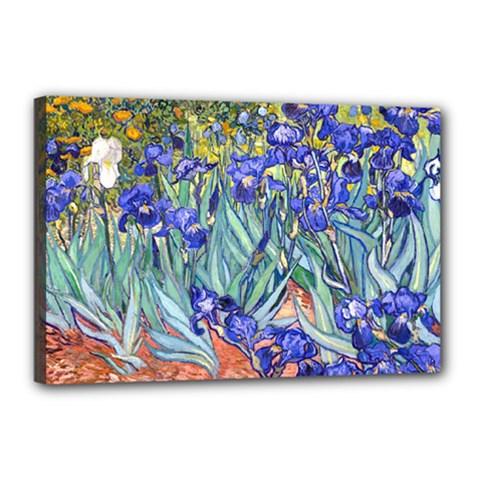 Vincent Van Gogh Irises Canvas 18  x 12  (Framed)