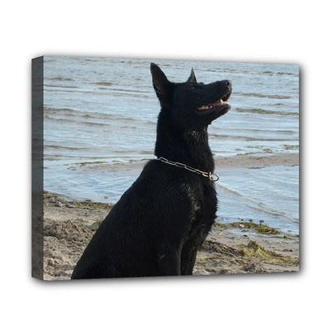 Black German Shepherd Canvas 10  x 8  (Framed)