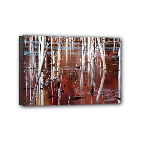 Automn Swamp Mini Canvas 6  X 4  (framed)