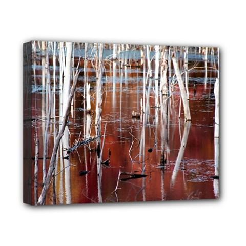 Automn Swamp Canvas 10  X 8  (framed)