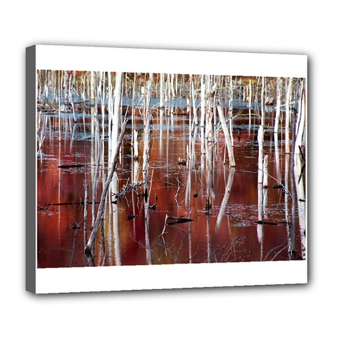 Automn Swamp Deluxe Canvas 24  x 20  (Framed)