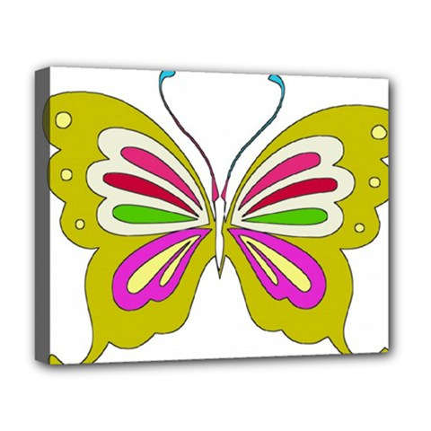 Color Butterfly  Deluxe Canvas 20  x 16  (Framed)