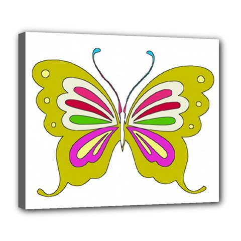 Color Butterfly  Deluxe Canvas 24  X 20  (framed)
