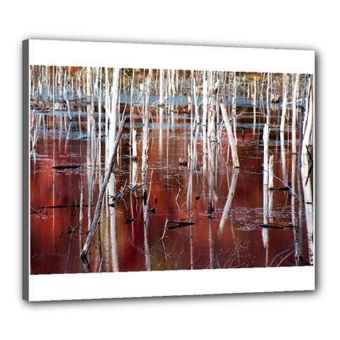 Swamp2 Filtered Canvas 24  x 20  (Framed)