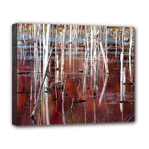 Swamp2 Filtered Deluxe Canvas 20  X 16  (framed)