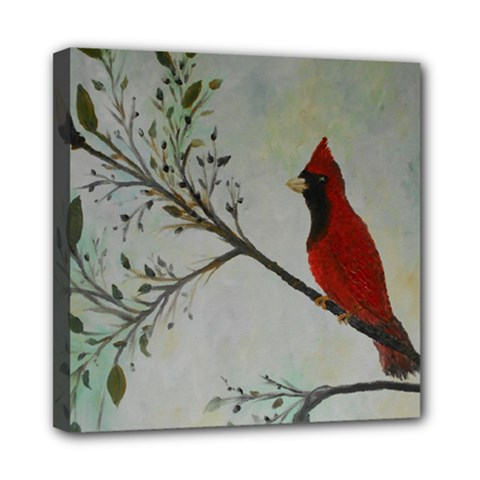 Sweet Red Cardinal Mini Canvas 8  x 8  (Framed)