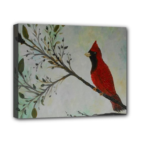 Sweet Red Cardinal Canvas 10  x 8  (Framed)