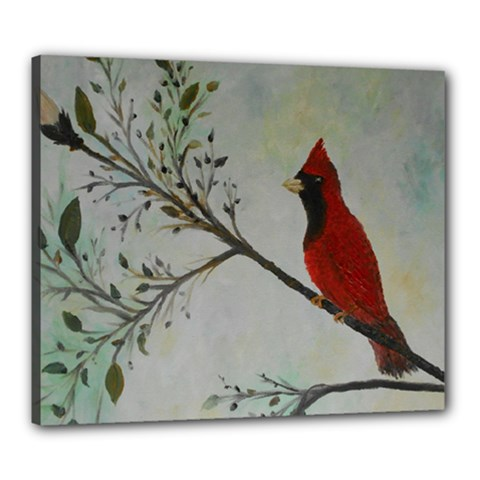 Sweet Red Cardinal Canvas 24  X 20  (framed)