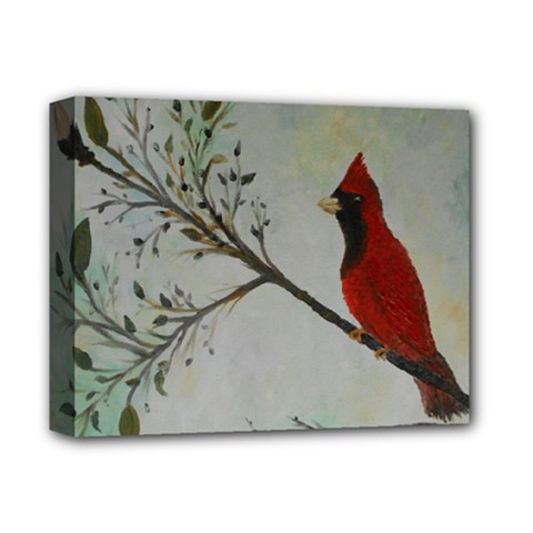 Sweet Red Cardinal Deluxe Canvas 14  X 11  (framed)
