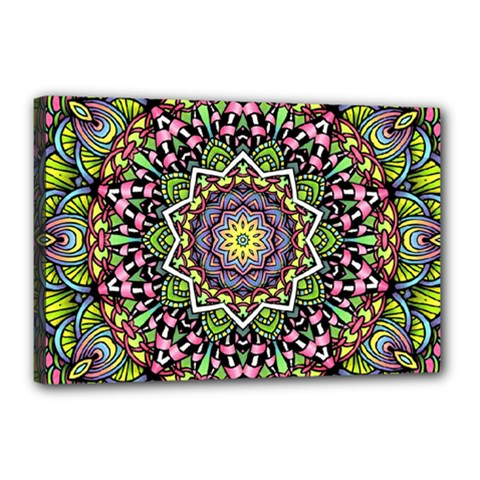 Psychedelic Leaves Mandala Canvas 18  x 12  (Framed)