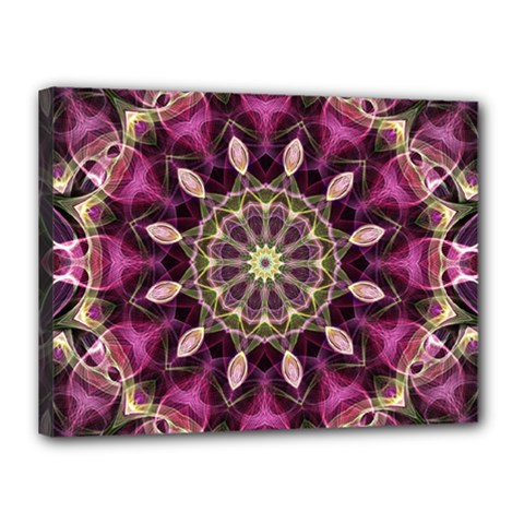 Purple Flower Canvas 16  x 12  (Framed)