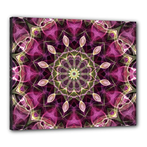 Purple Flower Canvas 24  x 20  (Framed)