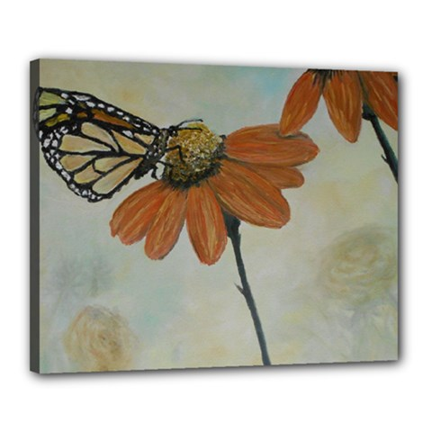 Monarch Canvas 20  x 16  (Framed)