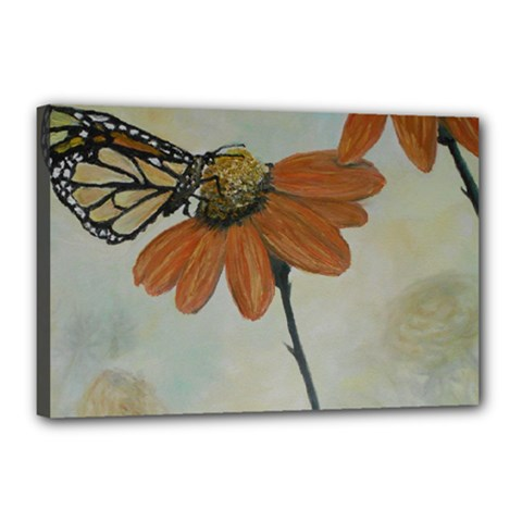 Monarch Canvas 18  x 12  (Framed)