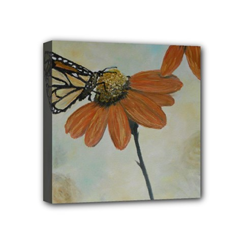 Monarch Mini Canvas 4  x 4  (Framed)