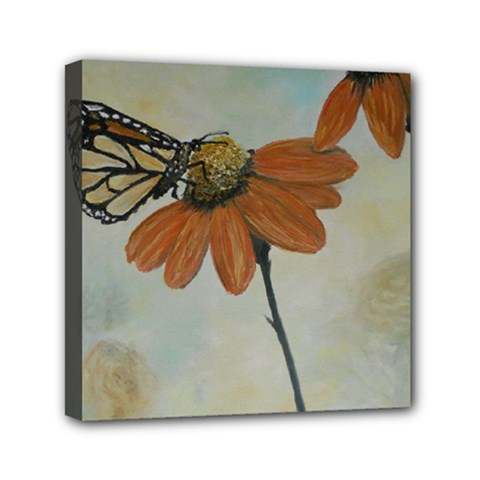 Monarch Mini Canvas 6  X 6  (framed)