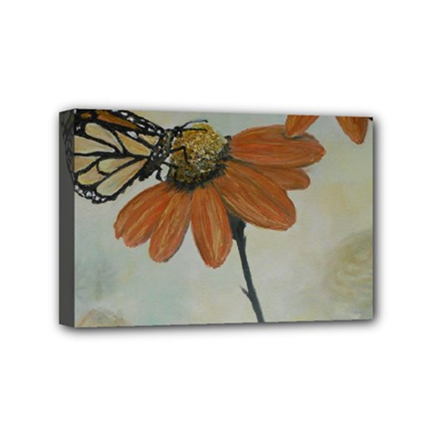 Monarch Mini Canvas 6  x 4  (Framed)