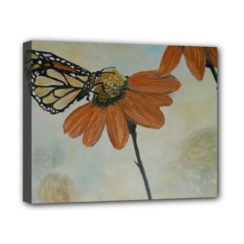 Monarch Canvas 10  x 8  (Framed)