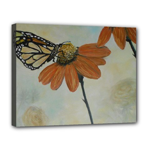 Monarch Canvas 14  x 11  (Framed)