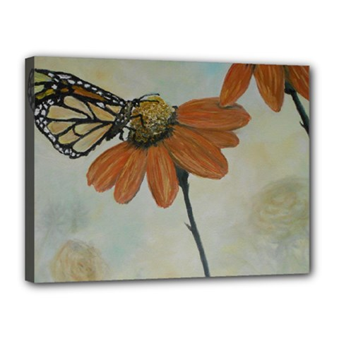 Monarch Canvas 16  x 12  (Framed)