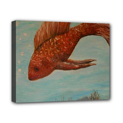 Gold Fish Canvas 10  x 8  (Framed)