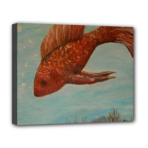 Gold Fish Deluxe Canvas 20  x 16  (Framed)