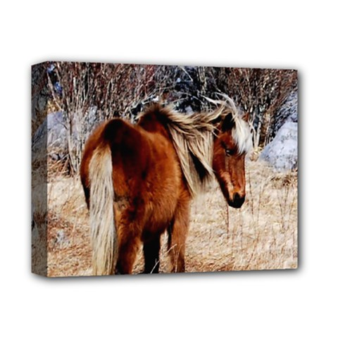Pretty Pony Deluxe Canvas 14  X 11  (framed)