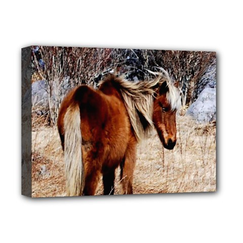 Pretty Pony Deluxe Canvas 16  x 12  (Framed)
