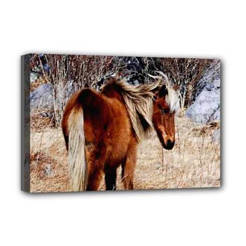 Pretty Pony Deluxe Canvas 18  X 12  (framed)