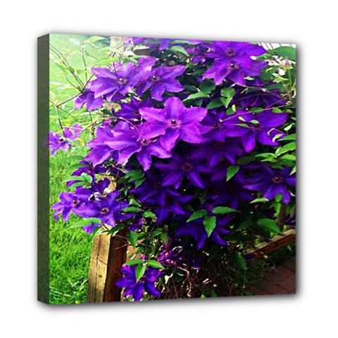 Purple Flowers Mini Canvas 8  x 8  (Framed)