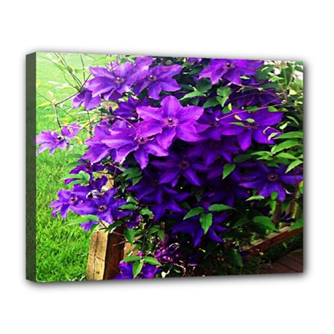 Purple Flowers Canvas 14  x 11  (Framed)