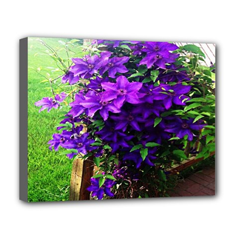 Purple Flowers Deluxe Canvas 20  x 16  (Framed)