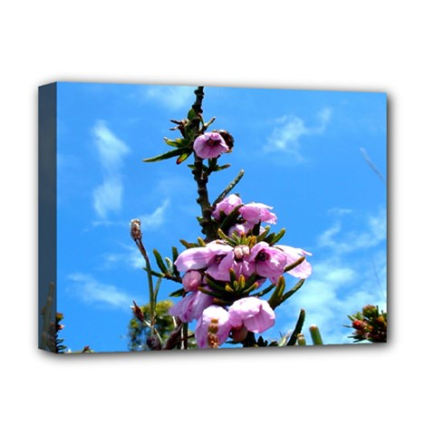 Pink Flower Deluxe Canvas 16  x 12  (Framed)