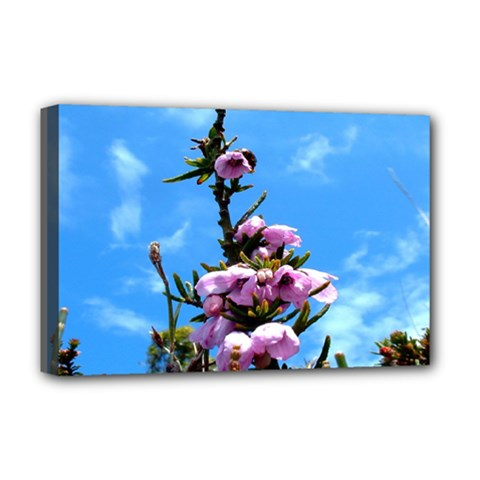 Pink Flower Deluxe Canvas 18  x 12  (Framed)