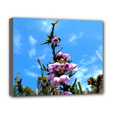 Pink Flower Deluxe Canvas 20  x 16  (Framed)