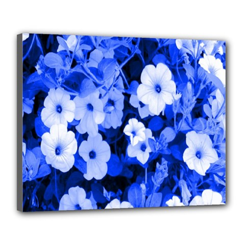 Blue Flowers Canvas 20  x 16  (Framed)