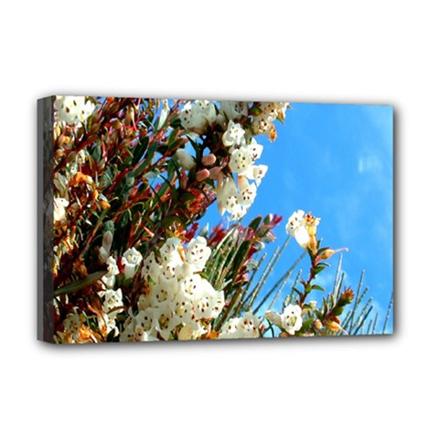 Australia Flowers Deluxe Canvas 18  x 12  (Framed)