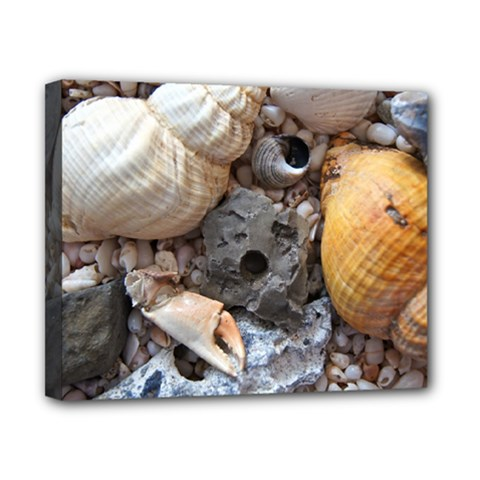 Beach Treasures Canvas 10  X 8  (framed)