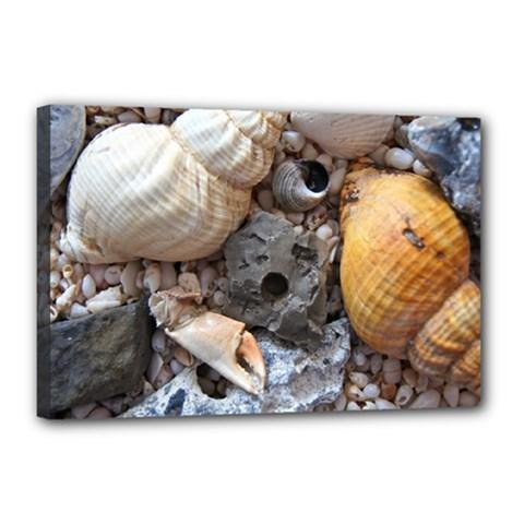 Beach Treasures Canvas 18  x 12  (Framed)