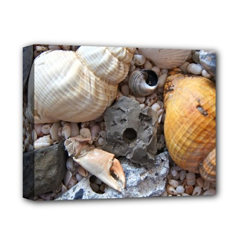 Beach Treasures Deluxe Canvas 14  x 11  (Framed)