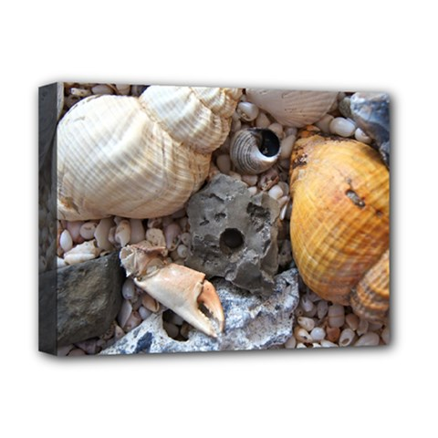Beach Treasures Deluxe Canvas 16  X 12  (framed)